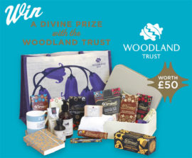 WIN a Divine package with the Woodland Trust