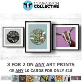 3 for 2 on Art and Animal Cards