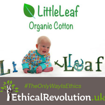 Little Leaf Coupon Code
