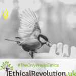 Free Ethical Marketing ebook